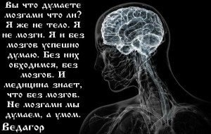 without_brain